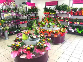 Boutique RapidFlore Normandie