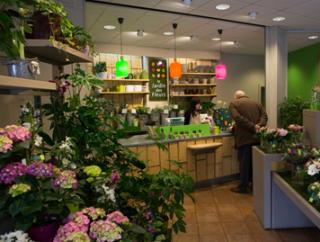 Salaire : combien gagne un fleuriste franchisé ?