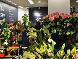 Comment ouvrir une franchise de fleurs?