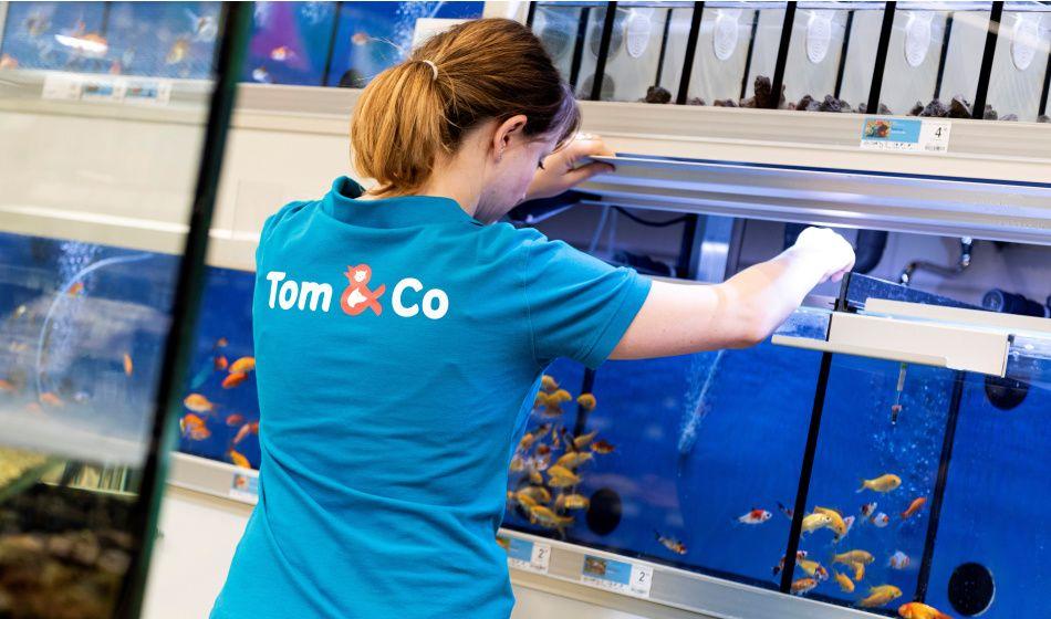 Salaire franchisé Tom&Co