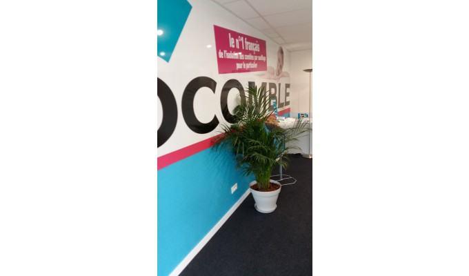 Rentabilité franchise Isocomble