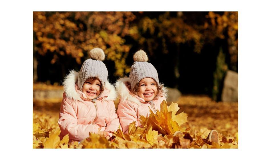 Acheter franchise Baby Trees