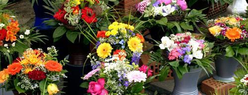 franchise fleurs