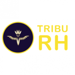 Franchise Tribu RH