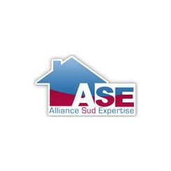 Franchise Alliance Sud Expertise (ASE)