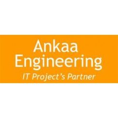 Franchise Ankaa Engineering