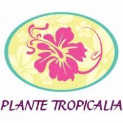 Franchise Jardinerie Plante Tropicalia
