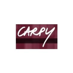 Franchise CARPY Coiffeur