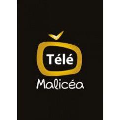 Franchise TVMalicea