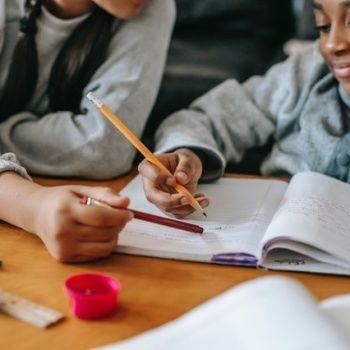Formation, enseignement, soutien scolaire
